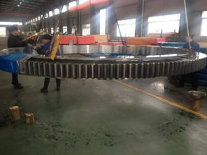 Single-Row Four Point Contact Slewing Bearing - Internal Gear (013) pictures & photos