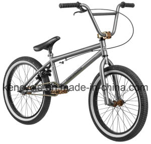 20 Inch Hi-Ten Frame BMX Bike/ Bicicleta/ Dirt Jump BMX/ Sy-Fs2098 pictures & photos