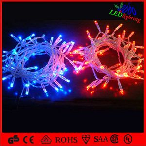 24V 10m 100LEDs Blue Christmas Light for Holiday pictures & photos