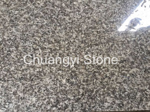 Chinese Cheap Granite for Floor/Wall/Stair/Step/Paver/Kerbstone/Landscape/Palisade/Countertop, G623