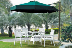 Garden Wicker Dining Set Outdoor Rattan Furniture Dining Set pictures & photos