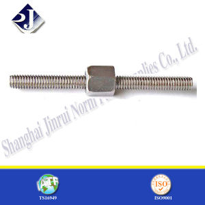 DIN975 Ground Screw with Nut and Washer pictures & photos