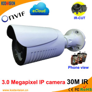 3.0 Megapixel IP 30m IR Color Waterproof Camera pictures & photos