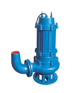 1 Inch Submersible Pump (QW) pictures & photos