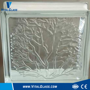 Coral Patterned Tempered Safety Glass Block/Brick pictures & photos