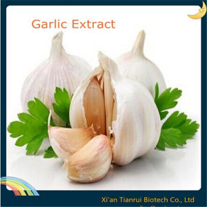 Garlic Extract Allicin 1%, 2% 25%, 50%, Alliin 1% 2% pictures & photos
