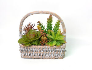 Life-Like Artificial Mixed Succulent Plant in Rattan Basket for Gift/Decoration/ pictures & photos