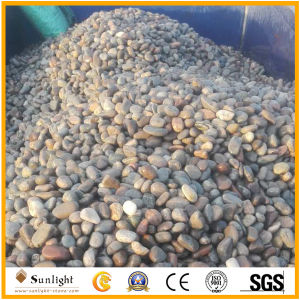 Natural River Multicolored Pebble Stone for Landscaping, Paving, Garden pictures & photos