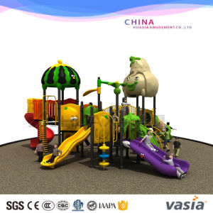 Vasia High Quality Kids Amusement Toy Playground Equipment pictures & photos