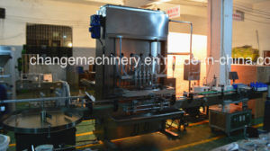 Liquid Filling Capping System China Supplier pictures & photos