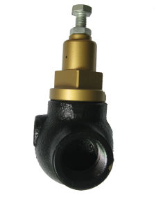 Manufacturing Compressored Air Medium Temperature Dn20 Minimum Pressure Valve pictures & photos