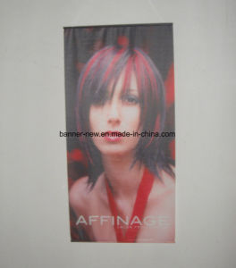 Plastic Pole Fabric Hanging Banner (SS-FH49) pictures & photos