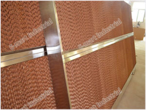 Agricultural Honeycomb Evaporative Cooling Pad/ Cooling Wall pictures & photos