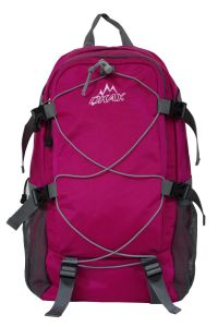 New Mountain Style Shoulder Backpack Sh-16122850 pictures & photos
