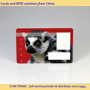 Spot Varnished PVC Card with Magnetic Stripe for Galleries pictures & photos