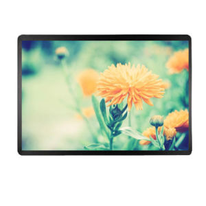 11.6 Inch IPS TFT LCD Module LCD Display with Edp Interface pictures & photos