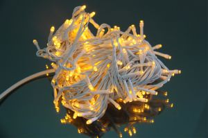 Christmas Light 5 Meter 50 LEDs Per String LED Blister String Light pictures & photos