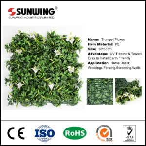 SGS Certificated Green Maple Leave Hedge for Home Garden Decor pictures & photos