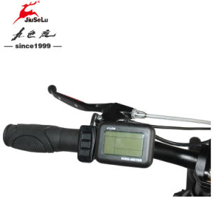"Black Brushless Motor 250W 20"" Electric Folding Bike EN15194 (JSL039S-1) pictures & photos"