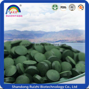 Top Quality Spirulina Powder/Tablet Wholesale pictures & photos