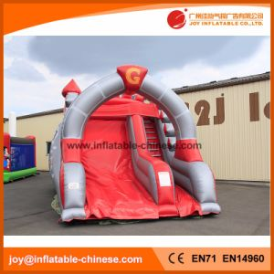 High Quality Carton Character Funny Inflatable Slide (T4-255) pictures & photos