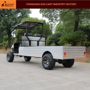2 Passenger Customized Electric Transport Golf Cart pictures & photos