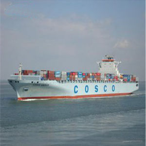 Logistics Shipping Service to West Africa pictures & photos