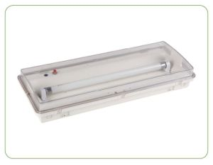 New Design T5 8W Emergency Light pictures & photos