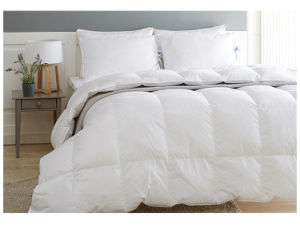 233t Warm Soft Healthy 95% White Goose Down Quilt Comforter Duvet pictures & photos