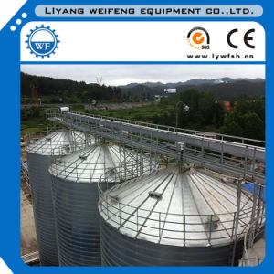 Carbon Steel Stainless Steel Grain Silo pictures & photos