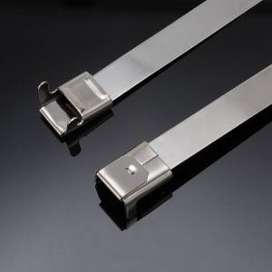 Stainless Steel Clamp Band pictures & photos