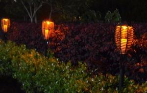Solar Garden Light Solar Lawn Light with Light Sensor pictures & photos