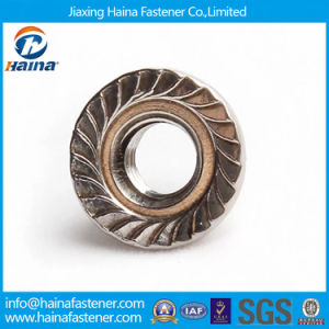 Stainless Steel / Nylon Steel Flange Nut, Nylon Nut, Cap Nut, Wing Nut pictures & photos