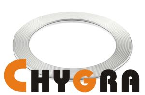 G2100 Expanded Graphite Cut Gasket pictures & photos