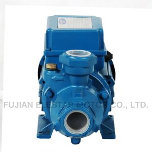 Kf Series Electric Water Peripheral Pump Factory Outlet pictures & photos