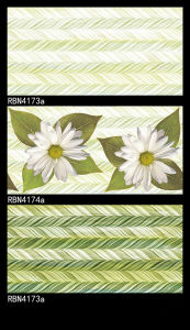 Rbn4174A 3D Inkjet Glazed Ceramic Wall Tile pictures & photos