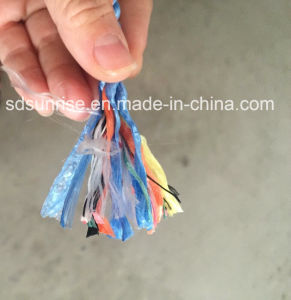 PP Rope Nylon Rope Twisted Rope Polyester Rope pictures & photos
