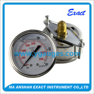 All Stainless Steel Pressure Gauge with Panel - Pressure Transmitters pictures & photos