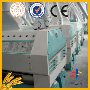 Brewery Grain Mill/ Flour Making Machine Price pictures & photos