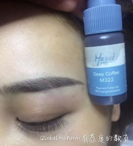 Mastor Eyebrow Permanent Makeup Pigment Tattoo Ink Micropigmentation pictures & photos
