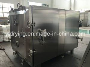 Vacuum Tray Drier, Vacuum Baking Oven pictures & photos