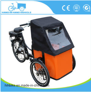 Small Size 3 Wheeler Bike with Different Color Choice pictures & photos