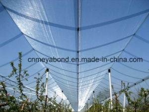 HDPE Leno Net / Anti Hail Nets pictures & photos