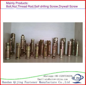 Heavy Duty Shield Anchor, China. pictures & photos