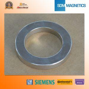 Big Size Permanent Neodymium Ring Motor Magnet pictures & photos