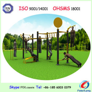 Adult Physical Outdoor Fitness Equipment pictures & photos