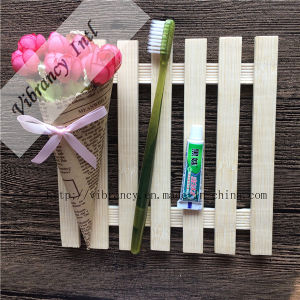 Cheap Promotion Disposable Hotel Toothbrush pictures & photos