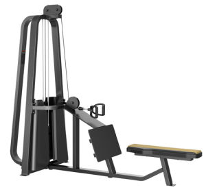 Gym Equipment Gym Body Building Equipment Pully Seated Row (XP20) pictures & photos
