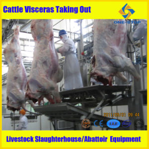Cattle Slaughterhouse Cattle Slaughter Equipment pictures & photos