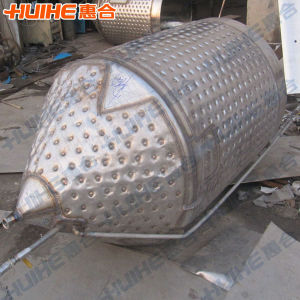 1000L Fermenter for Sale (China Supplier) pictures & photos